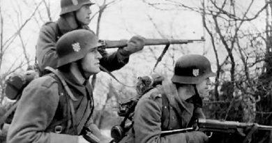 Как хърватски военни формирования воюват срещу СССР във Втората световна война