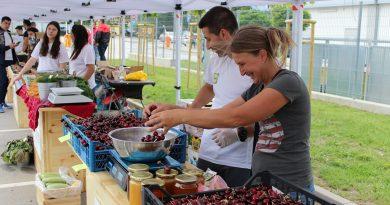 Първите плодове на лятото на фермерския пазар на Lidl